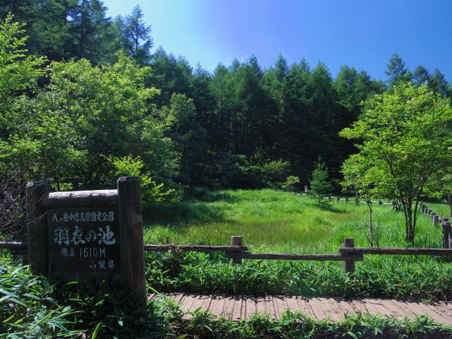 赤岳(八ヶ岳)・真教寺尾根 登山口コースガイド【登山口ナビ】