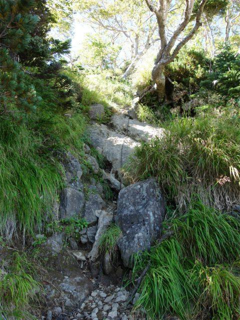 八ヶ岳・赤岳(真教寺尾根) 登山口コースガイド 最初の鎖場【登山口ナビ】