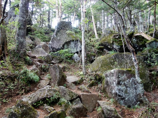 八ヶ岳・赤岳(真教寺尾根) 登山口コースガイド【登山口ナビ】