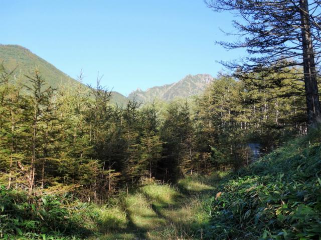 赤岳(八ヶ岳)・県界尾根 登山口コースガイド 林道【登山口ナビ】