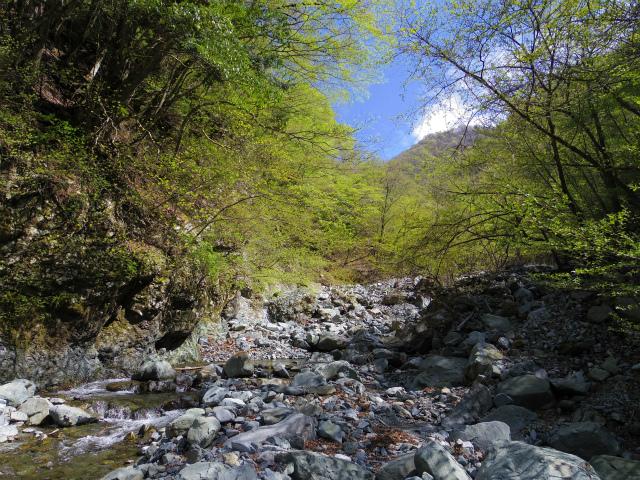 丹沢山(早戸大滝~丹沢三峰) 登山口コースガイド【登山口ナビ】