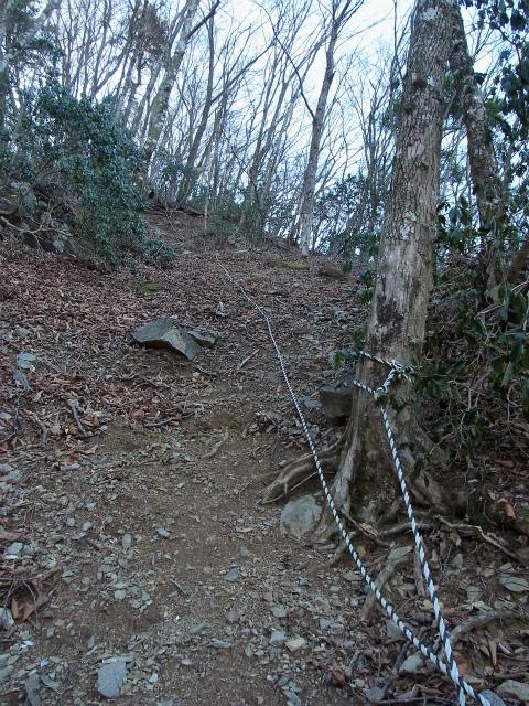 丹沢山(早戸大滝~大滝新道) 登山口コースガイド ロープの張られた急登【登山口ナビ】