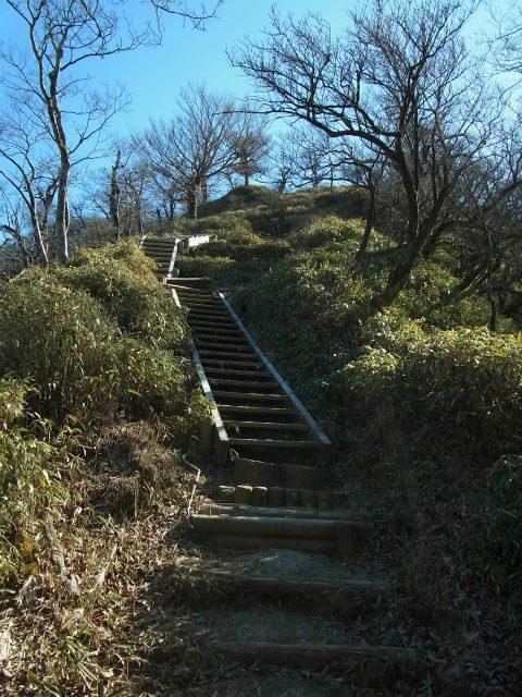 丹沢山(早戸大滝~大滝新道) 登山口コースガイド 階段の登り返し【登山口ナビ】