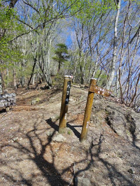 両神山(八丁峠コース) 登山口コースガイド 八丁峠【登山口ナビ】