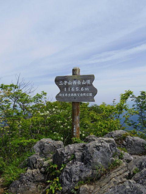 西上州・二子山(東岳・西岳) 登山口コースガイド 山頂【登山口ナビ】
