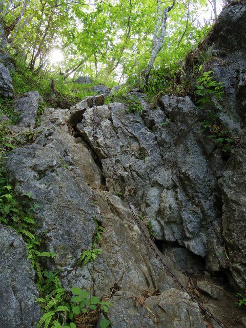 西上州・二子山(東岳・西岳) 登山口コースガイド 一般コース鎖場【登山口ナビ】