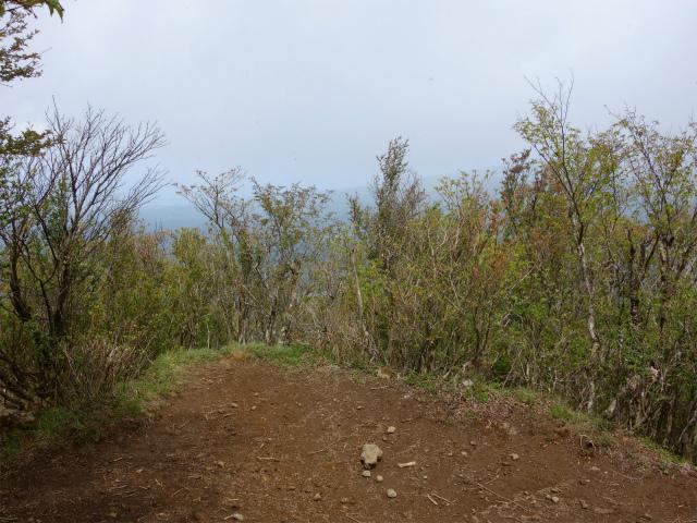 越前岳(十里木高原ルート) 登山口コースガイド 平坦地の展望台【登山口ナビ】