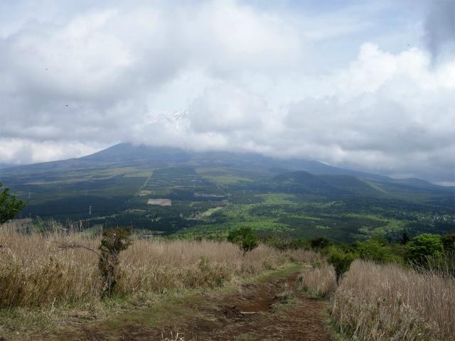 越前岳(十里木高原ルート) 登山口コースガイド 馬ノ背からの富士山【登山口ナビ】