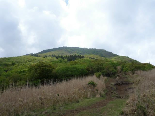 越前岳(十里木高原ルート) 登山口コースガイド【登山口ナビ】