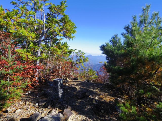 大ナゲシ(赤岩峠経由) 登山口コースガイド 山頂三角点【登山口ナビ】