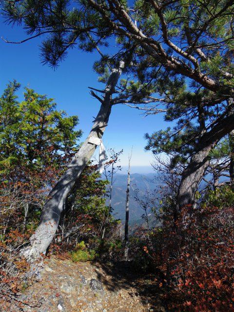 赤岩岳(赤岩尾根) 登山口コースガイド P2峰山頂【登山口ナビ】