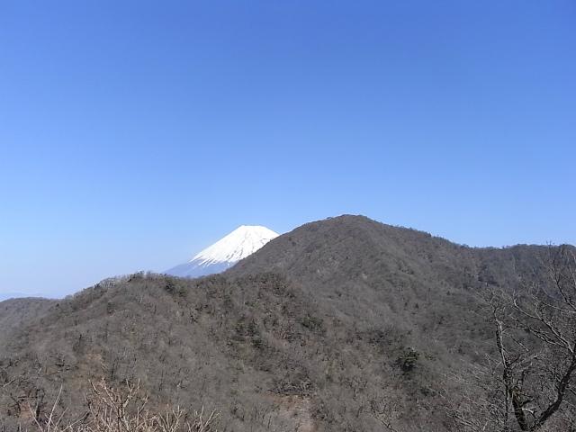 越前岳~位牌岳(愛鷹山神社口周回) 登山口コースガイド 越前岳と富士山【登山口ナビ】