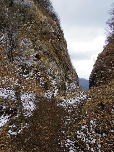 越前岳~位牌岳(愛鷹山神社口周回) 登山口コースガイド 割石峠【登山口ナビ】