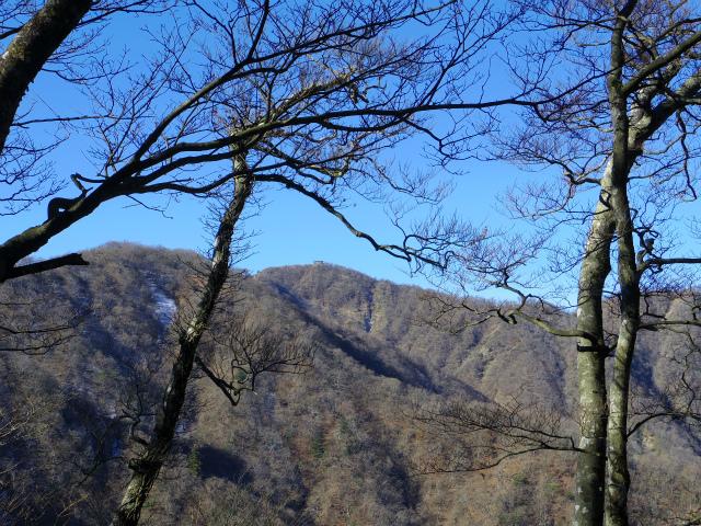 塔ノ岳(長尾尾根) 登山口コースガイド 塔ノ岳【登山口ナビ】