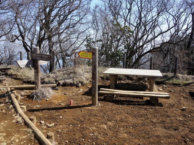 塔ノ岳(丹沢表尾根) 登山口コースガイド 新大日山頂【登山口ナビ】