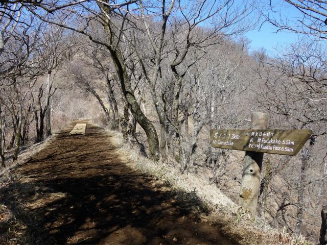 塔ノ岳(丹沢表尾根) 登山口コースガイド 新大日の緩い下り【登山口ナビ】