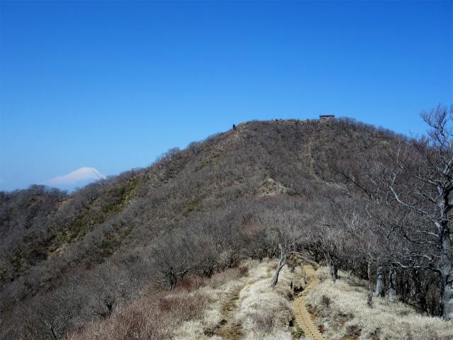 塔ノ岳(丹沢表尾根) 登山口コースガイド 塔ノ岳と富士山【登山口ナビ】