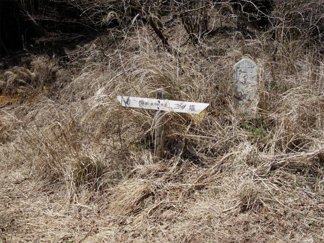 三ノ塔(二ノ塔尾根)登山口コースガイド 表丹沢林道【登山口ナビ】