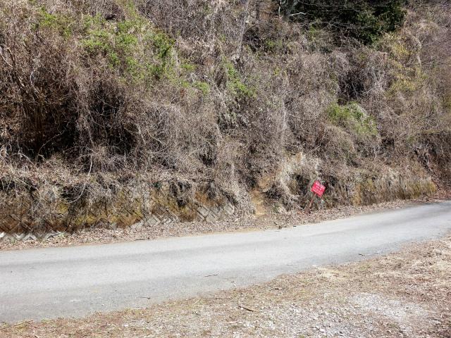 三ノ塔(二ノ塔尾根)登山口コースガイド 作業道合流点【登山口ナビ】