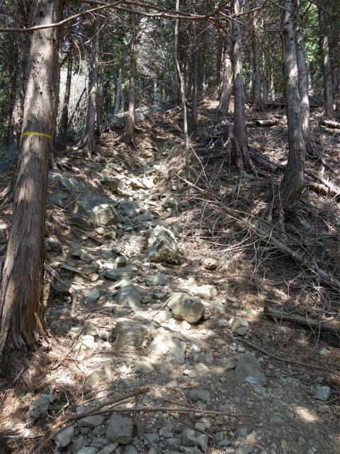 三ノ塔(二ノ塔尾根)登山口コースガイド 岩の転がる急登【登山口ナビ】