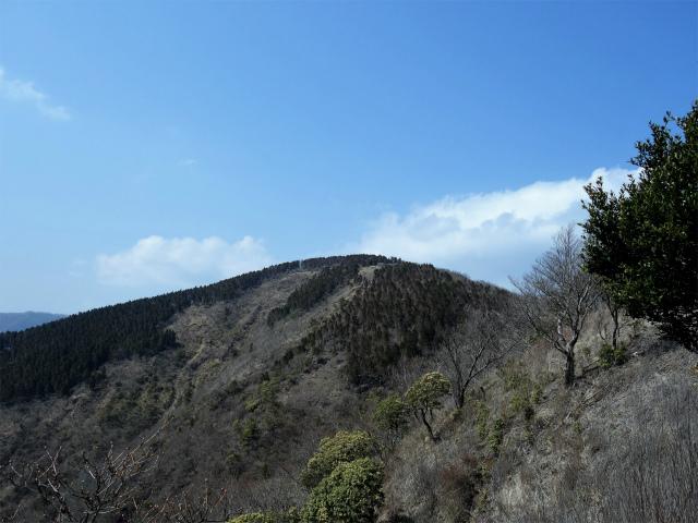 三ノ塔(二ノ塔尾根)登山口コースガイド 二ノ塔尾根からの三ノ塔【登山口ナビ】