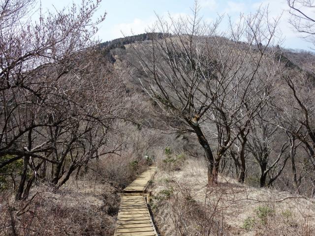 三ノ塔(二ノ塔尾根)登山口コースガイド【登山口ナビ】