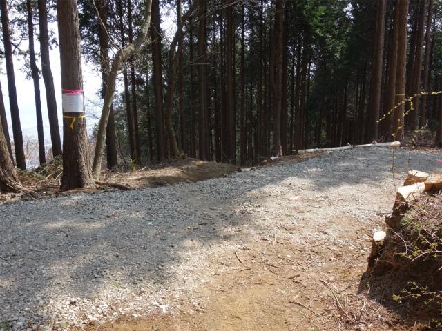 三ノ塔(二ノ塔尾根)登山口コースガイド 作業道横断箇所【登山口ナビ】
