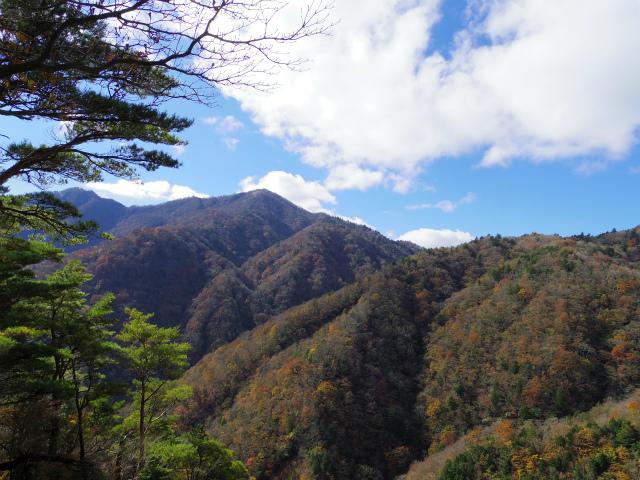 蛭ヶ岳(榛ノ木丸~姫次)コースガイド 蛭ヶ岳【登山口ナビ】