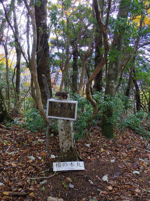 蛭ヶ岳(榛ノ木丸~姫次)コースガイド 榛ノ木丸山頂【登山口ナビ】