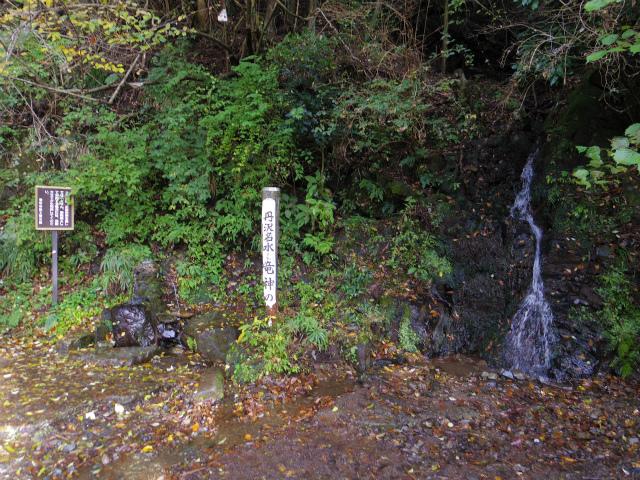 塔ノ岳(政次郎尾根・天神尾根) 登山口コースガイド 戸川林道 竜神の泉【登山口ナビ】