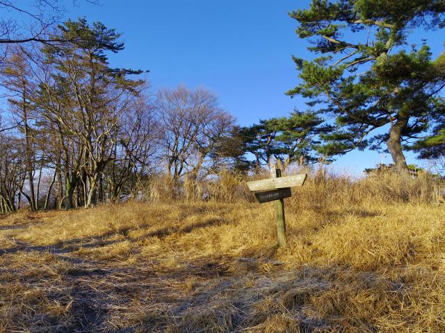鍋割山(表丹沢県民の森コース)コースガイド 櫟山山頂【登山口ナビ】