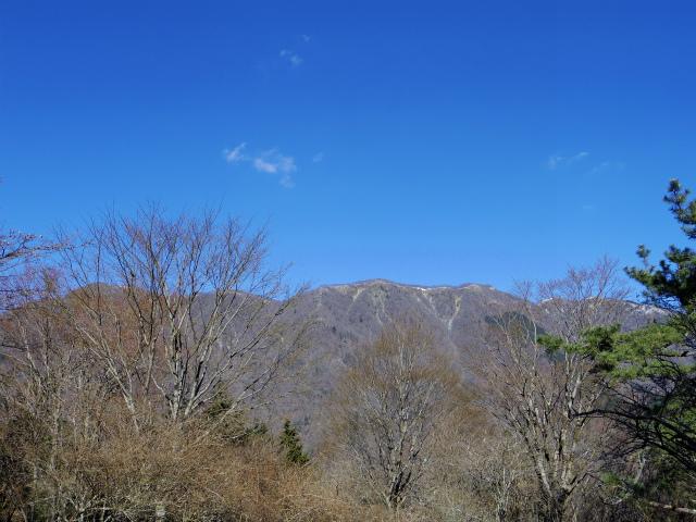 鍋割山(表丹沢県民の森コース)コースガイド 鍋割山から塔ノ岳稜線【登山口ナビ】