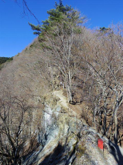鍋割山(表丹沢県民の森コース)コースガイド 後沢乗越【登山口ナビ】