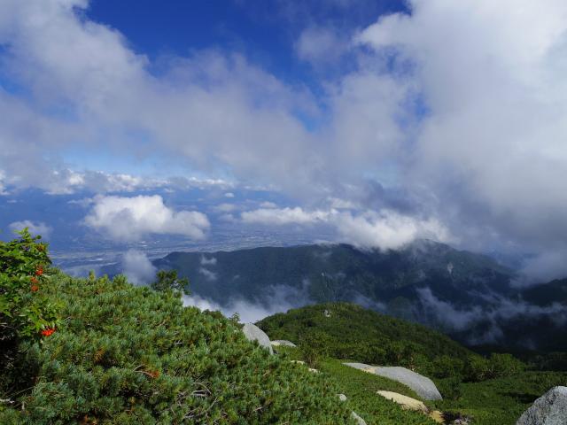 鳳凰三山(青木鉱泉~中道コース) 御所山・千頭星山の稜線【登山口コースガイド】