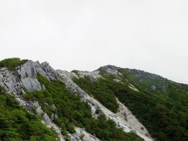鳳凰三山(青木鉱泉~中道コース) 観音岳の稜線【登山口コースガイド】