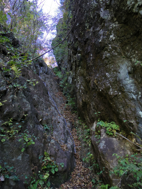 表妙義・金洞山(中ノ岳~鷹戻し~相馬岳) 登山口コースガイド 主稜のコル【登山口ナビ】