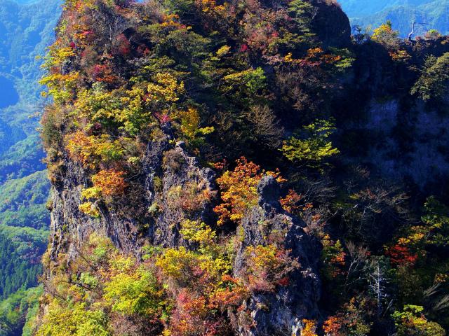 表妙義・金洞山(中ノ岳~鷹戻し~相馬岳) 登山口コースガイド こぶ岩【登山口ナビ】