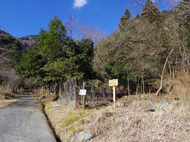 鍋割山(後沢右岸コース) コースガイド 後沢右岸ルート入口【登山口ナビ】