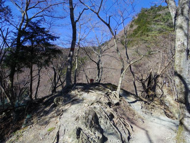 鍋割山(後沢右岸コース) コースガイド 後沢右岸コース分岐【登山口ナビ】