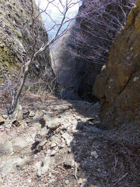 表妙義・金洞山(中ノ岳~鷹戻し~相馬岳) 登山口コースガイド タルワキ沢コース【登山口ナビ】