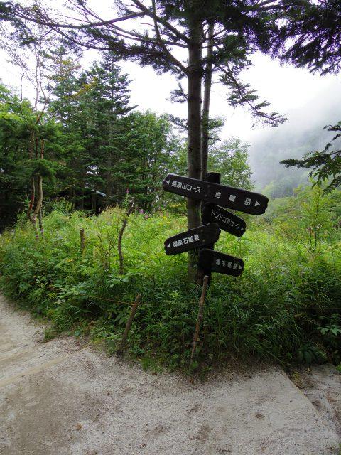 鳳凰三山(青木鉱泉~ドンドコ沢コース) 燕頭山コース分岐【登山口コースガイド】