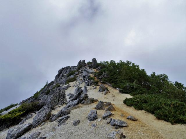 鳳凰三山(青木鉱泉~ドンドコ沢コース) 観音岳下り【登山口コースガイド】