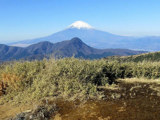 富士山が良く見える山 登山口コースガイド 明神ヶ岳山頂【登山口ナビ】