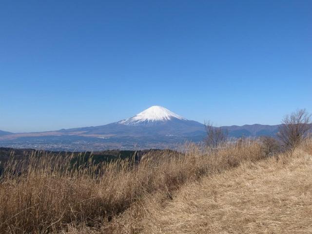 富士山が良く見える山 登山口コースガイド 矢倉岳山頂【登山口ナビ】