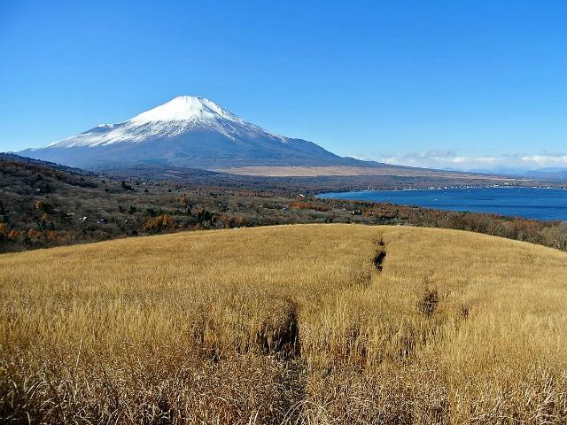 富士山が良く見える山 登山口コースガイド 鉄砲木ノ頭山頂【登山口ナビ】