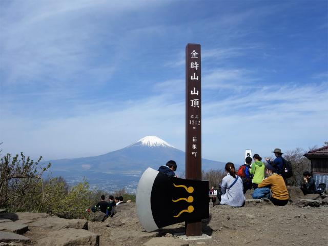 金時山(金時神社コース) 山頂【登山口コースガイド】