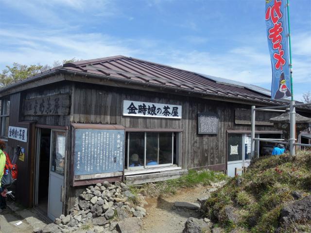 金時山(金時神社コース) 金時娘の茶屋【登山口コースガイド】