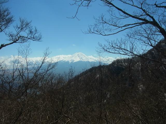 御坂黒岳(新御坂トンネル河口湖口) 【登山口コースガイド】