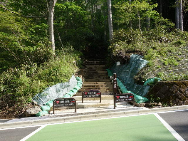 金時山(金時神社コース)はこね金太郎ライン横断地点【登山口コースガイド】