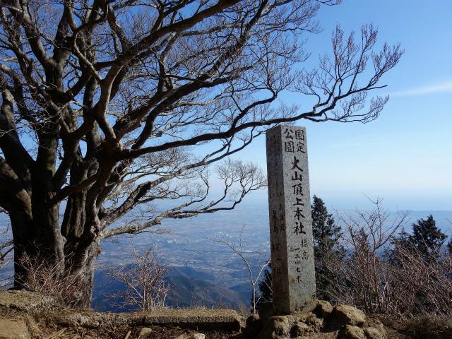 大山(ヤビツ峠~イタツミ尾根)阿夫利神社本社前の桜【登山口コースガイド】